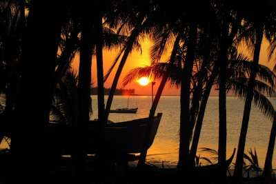 Silhouette of palm trees during sunset at Kalpeni Beach in Lakshadweep