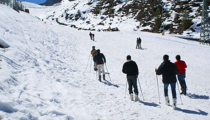 Auli New Year For Couples