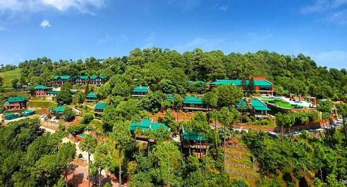Resorts in Kasauli