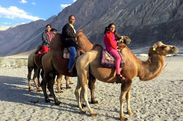 camel ride in hunder