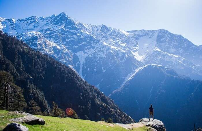 15 Best Mcleodganj Homestays Ideal For Your Next Vacay In The Hills