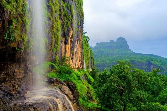 visit bhimashankar forest reserve during winters for maximum fun