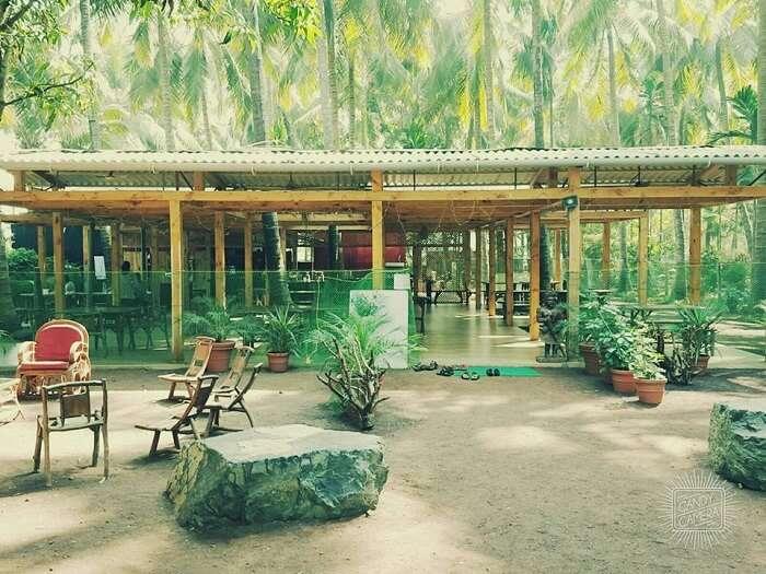 eco resort in alibaug
