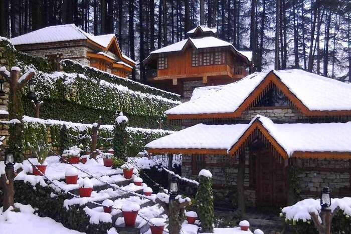 stay at a tree house in manali, among the best new year celebration ideas for couples