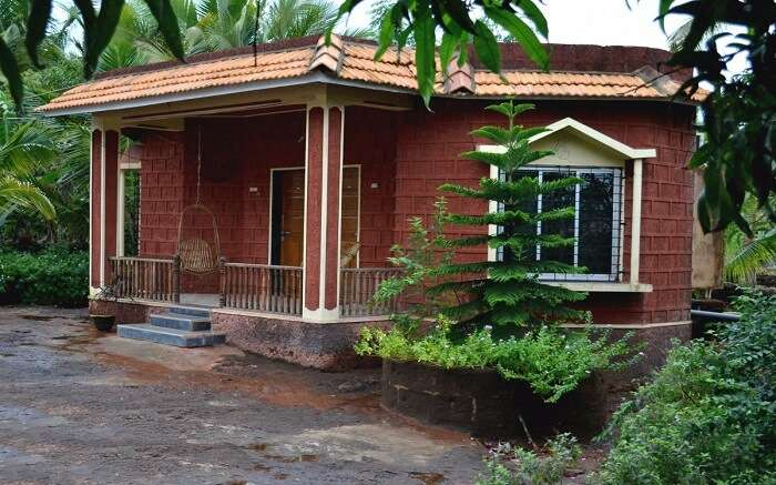 A red brick cottage surrounded by palm trees