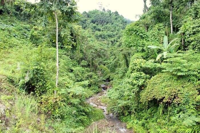waterfalls in arunachal