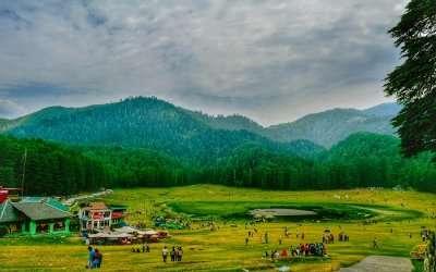 Khajjiar ground surrounded by tall deodar trees
