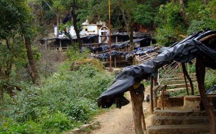 acj-1710-camping-in-rishikesh (1)