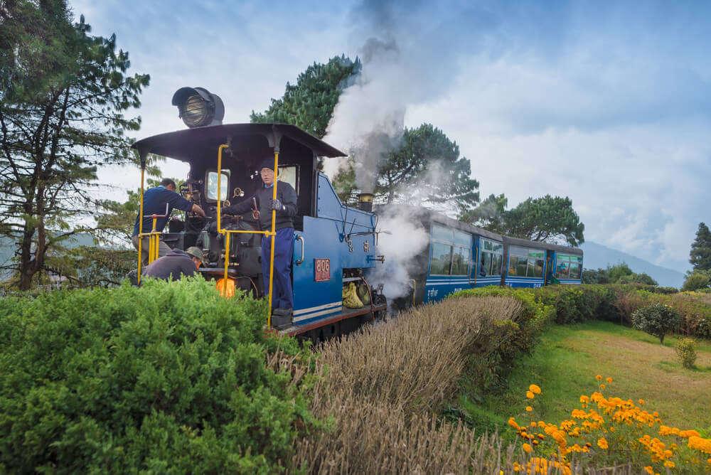 a toy train in darjeeling