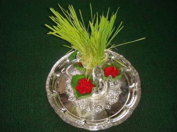 grass and flowers on a silver plate