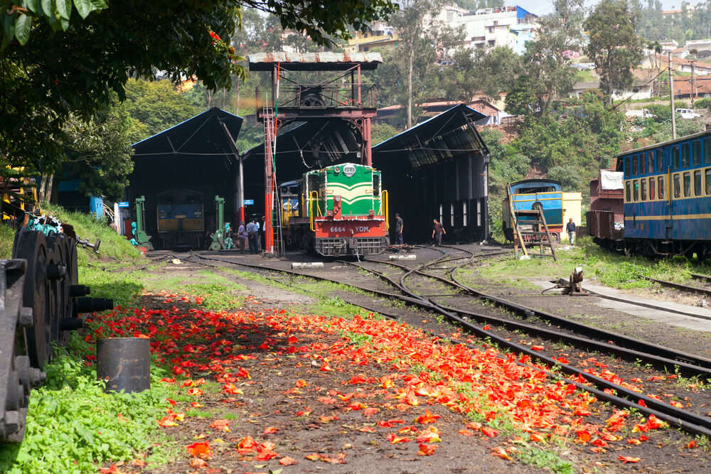 toy train in south