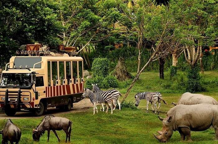safari and marine park bali