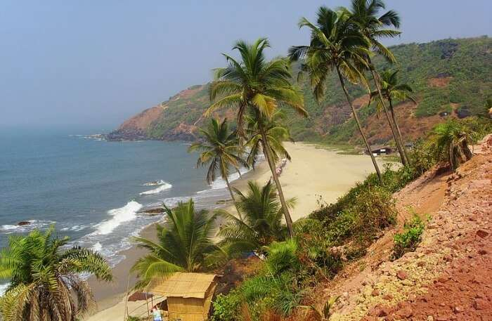 Arambol Beach View