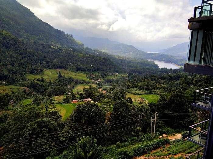 view from hotel in nuwara eliya