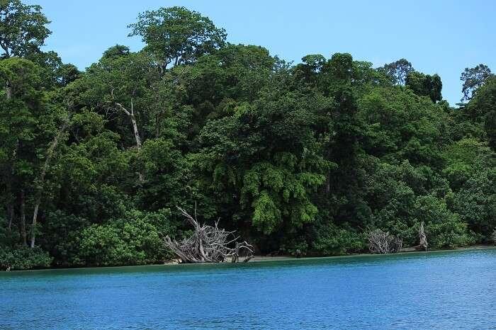 watersports in neil island
