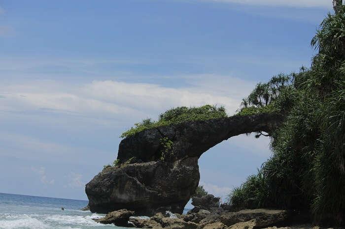 howrah bridge coral reef