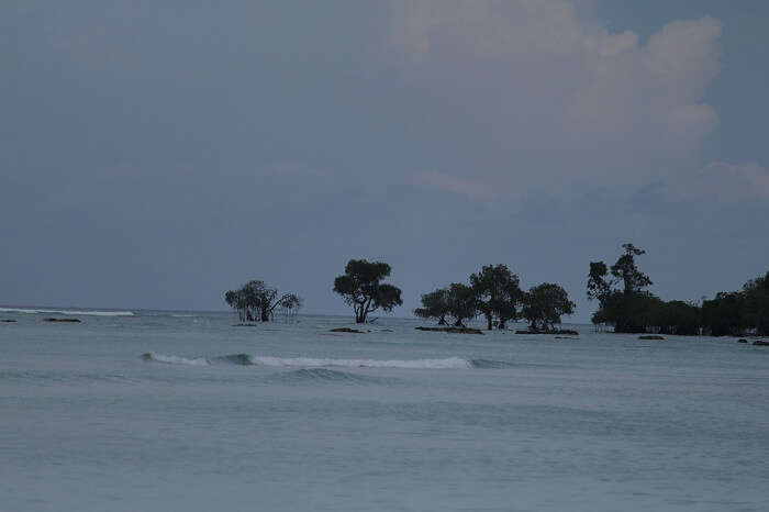 things to see in andaman