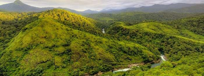 Silent Valley National Park's hills from a bird's eye angle