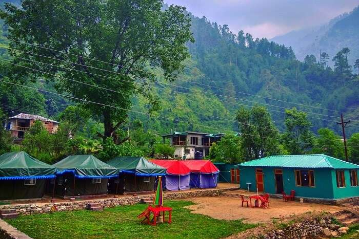 stay at Tirthan Holidays Camp & Cottages