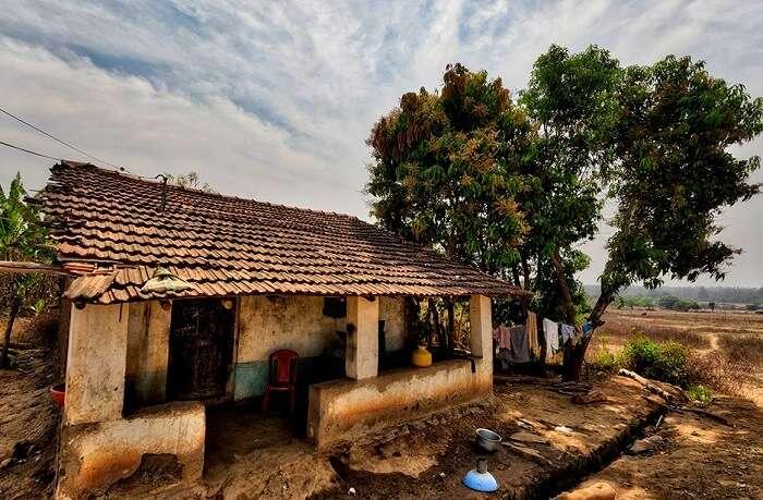 tribal village in dandeli