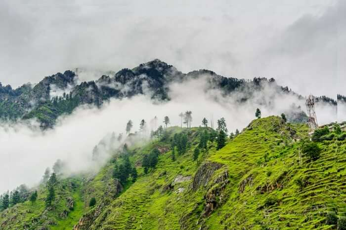 mist-covered green mountains
