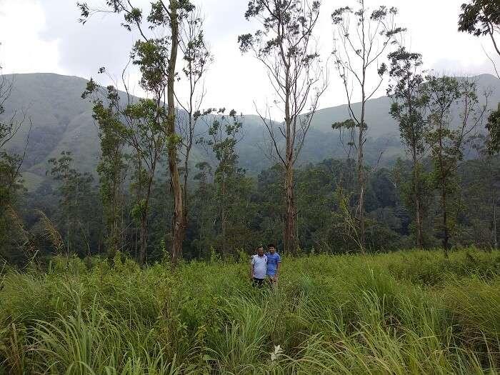 Periyar reserve in Thekkady