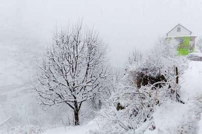 snowfall in Kasol