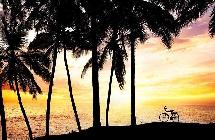 goa bike trip