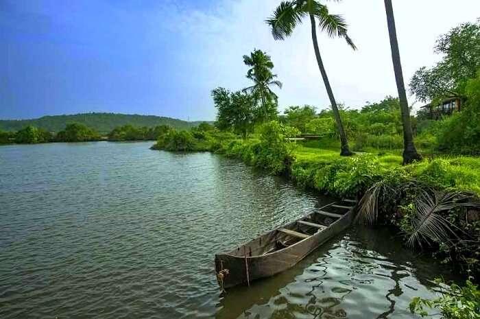backwaters escape in goa