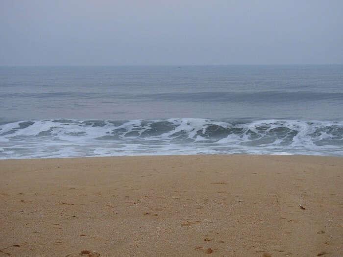 beach in alleppey