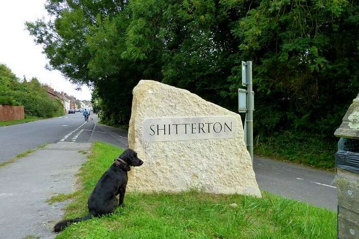 visit the town of Shitterton