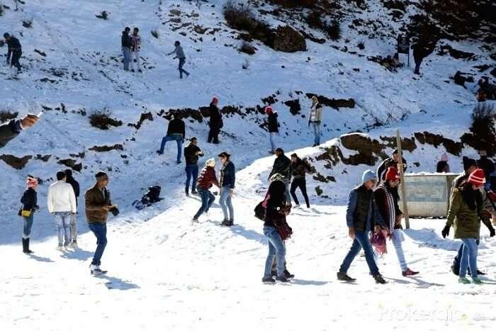 essay on snowfall in shimla