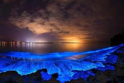 Bioluminescent Beach in Vaadhoo Island in Maldives