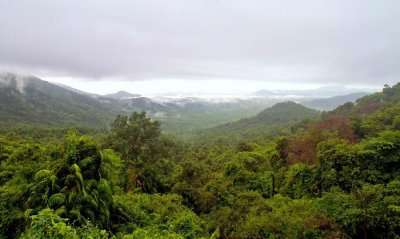 Serene and Green hills