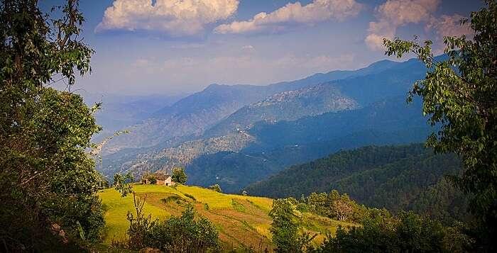 views from binsar, almora