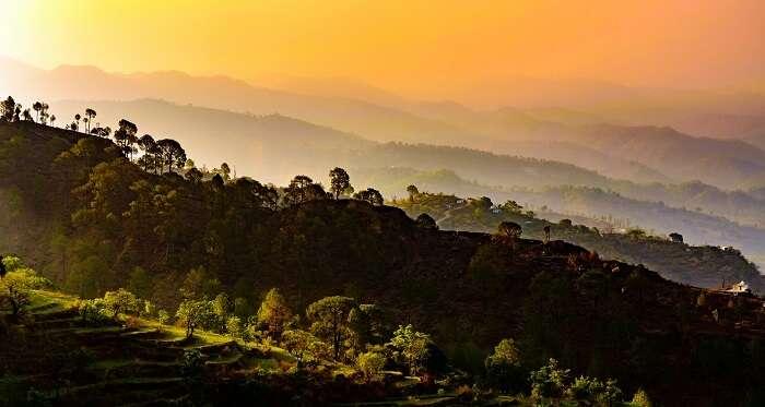 Binsar Wildlife Sanctuary at dusk