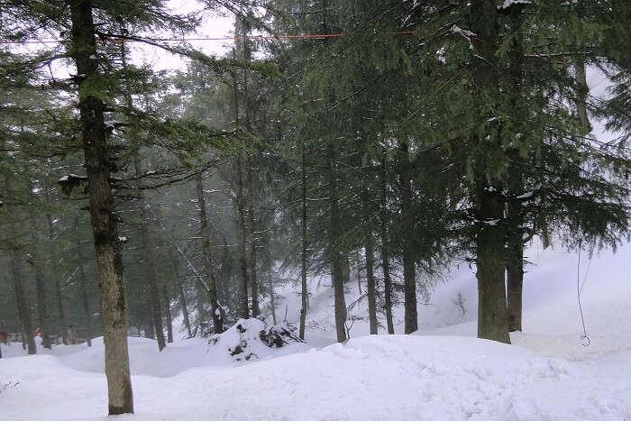 Kufri near Shimla in Himachal