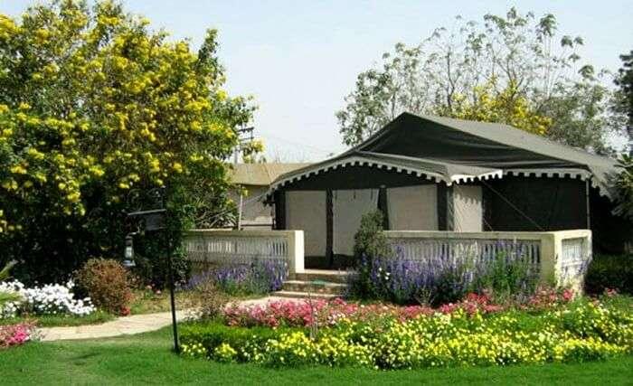 botanix resort