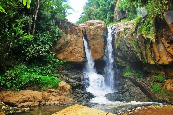 A summer hike to majestic Law's Falls Coonoor