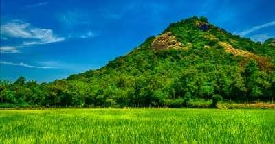 green mountain amid grass field