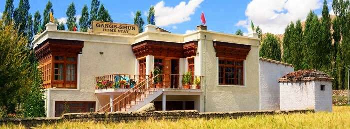 stay in ladakh at Gangs Shun Homestay