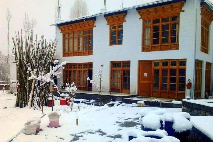 stay in ladakh at Jimmy's Homestay