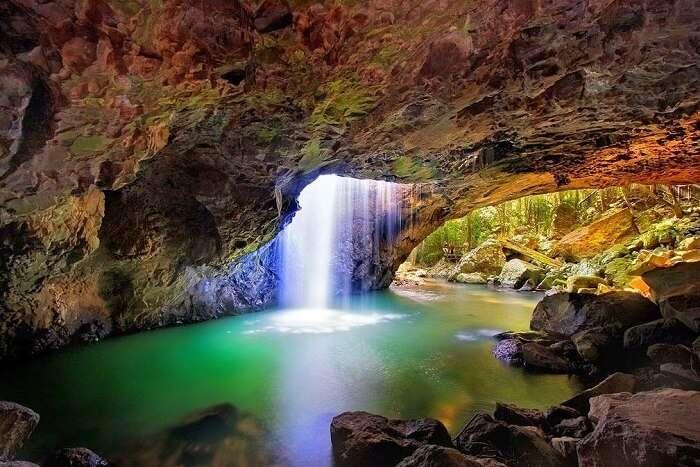 Springbrook National Park gold coast