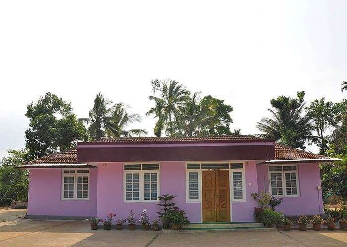 traditional and lovely homestay