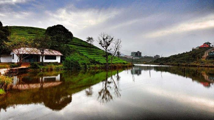 surroundings of hills and greenery