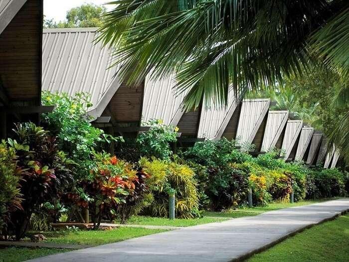 Palm Bungalows in Hamilton Island, Australia