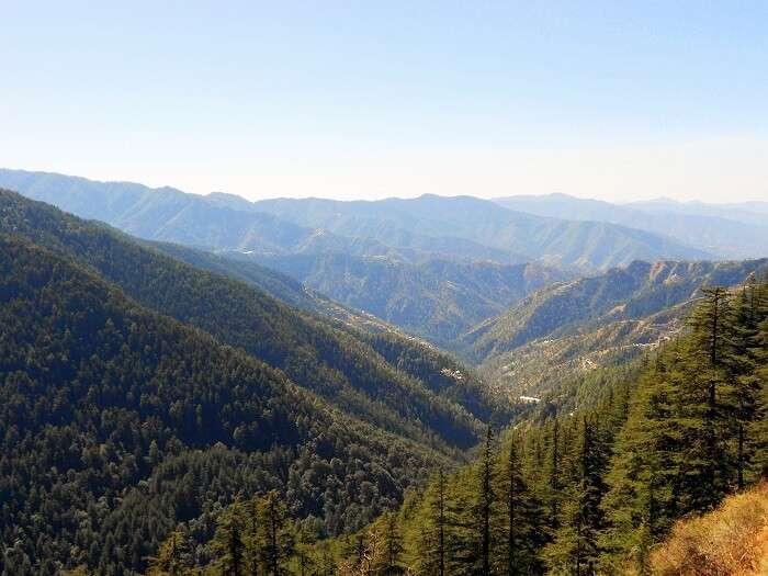 Honeymoon Trip To Himachal