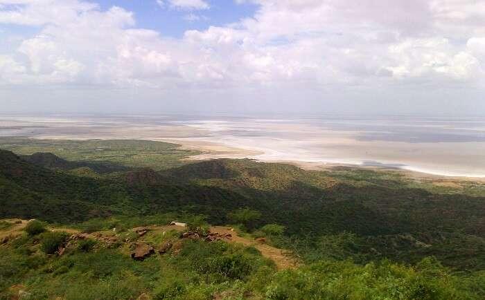 Banni Grassland Reserve Bhuj