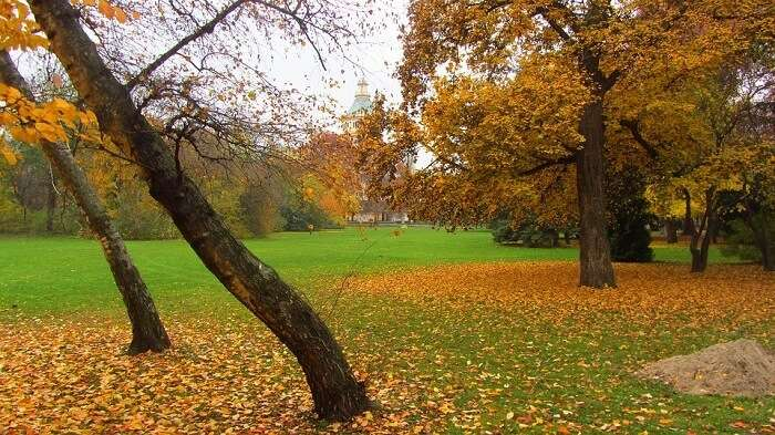 Explore Margaret Island on a golf cart in budapest Hungary