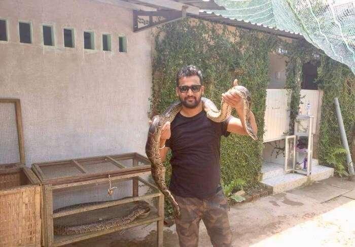 pallavi vietnam family trip: posing with snake
